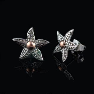 Silver earrings stars